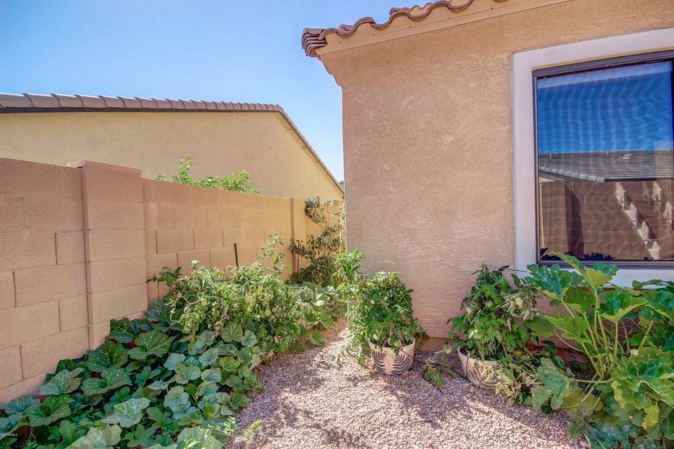 MLS 5607601 2165 E YUMA Avenue, Apache Junction, AZ 85119 Apache Junction AZ Community Pool