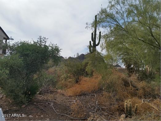 10444 E La Palma Avenue Lot 199, Gold Canyon, AZ 85118