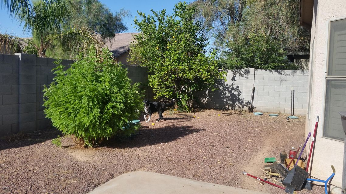 MLS 5613956 8534 W PRESTON Lane, Tolleson, AZ 85353 Tolleson AZ Three Bedroom