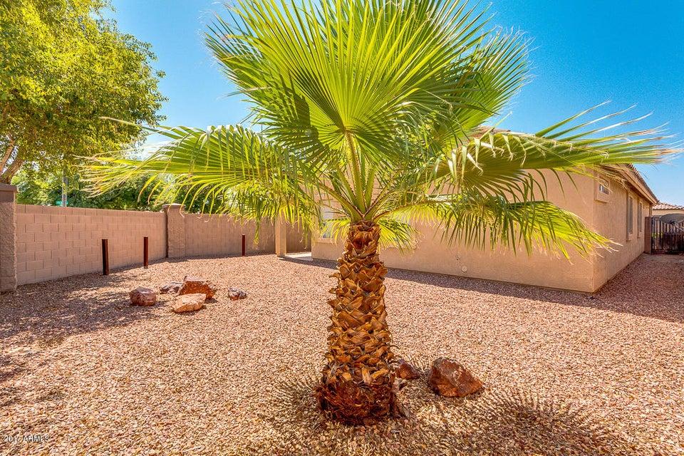 MLS 5616709 11352 W Chase Drive, Avondale, AZ 85323 Avondale AZ Durango Park