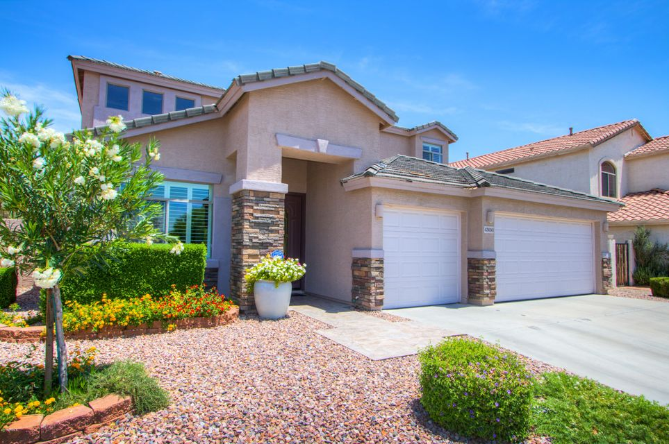 43650 W SNOW Drive, Maricopa, AZ 85138