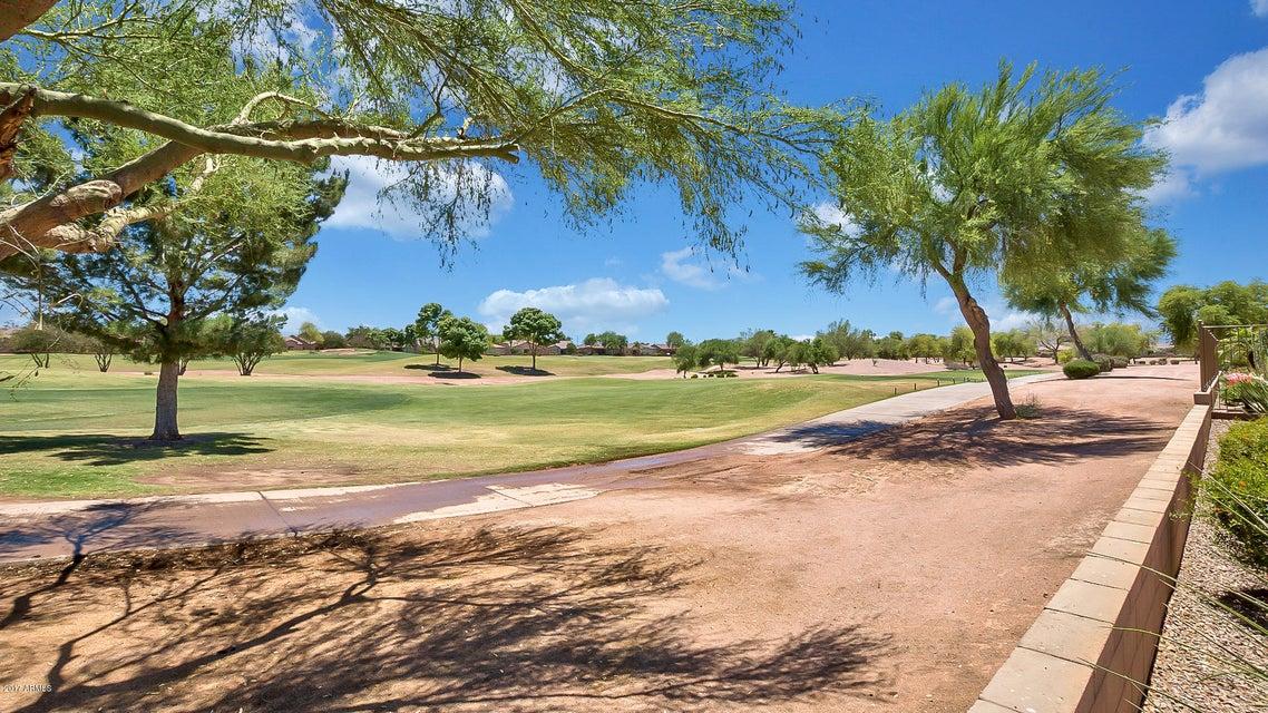 MLS 5620453 5385 S EUCALYPTUS Drive, Gilbert, AZ 85298 Adult Community