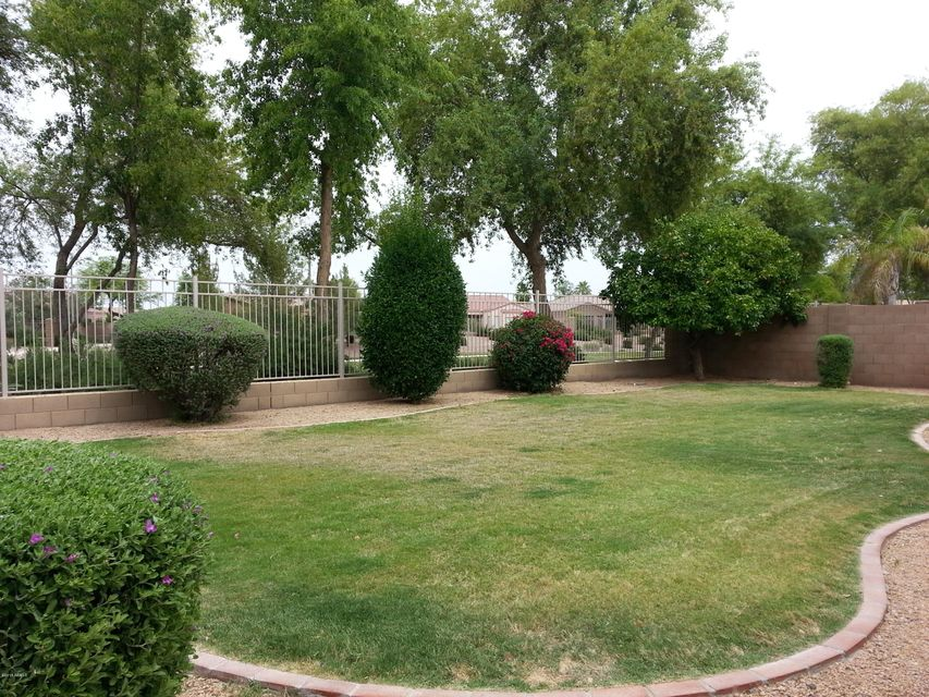 MLS 5618447 500 W IRIS Drive, Chandler, AZ 85248 Chandler AZ Fox Crossing