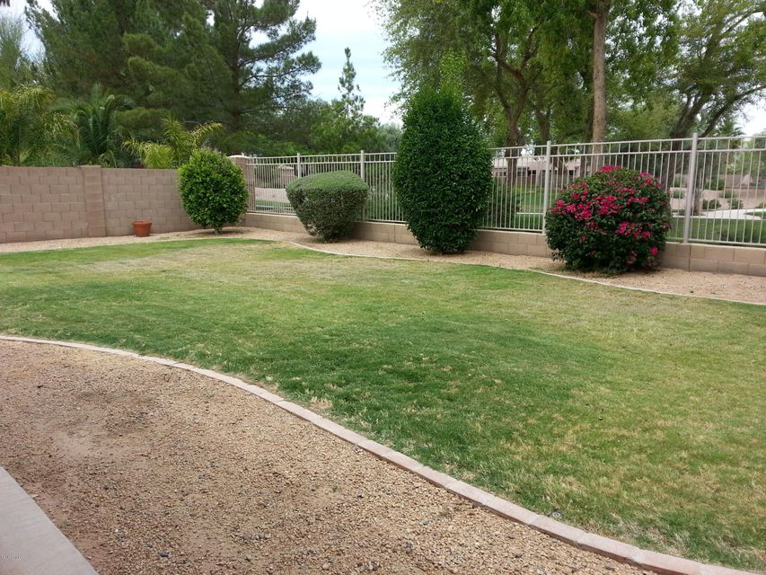 MLS 5618447 500 W IRIS Drive, Chandler, AZ Fox Crossing
