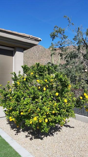 12785 N 135TH Street Scottsdale, AZ 85259 - MLS #: 5619075