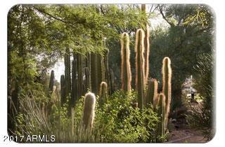 MLS 5619555 5745 W IRONWOOD Drive, Glendale, AZ 85302 Glendale AZ Marbrisa Ranch