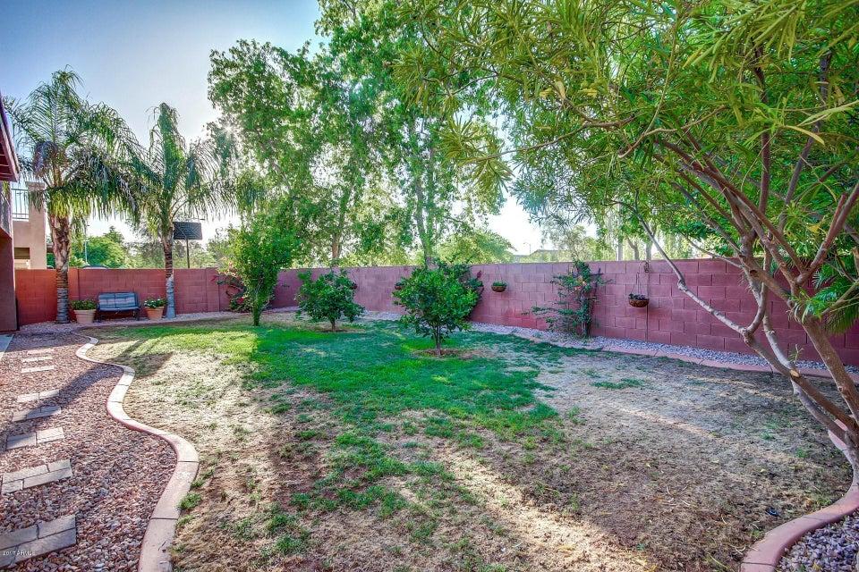MLS 5621139 12822 W MULBERRY Drive, Avondale, AZ 85392 Avondale AZ Scenic