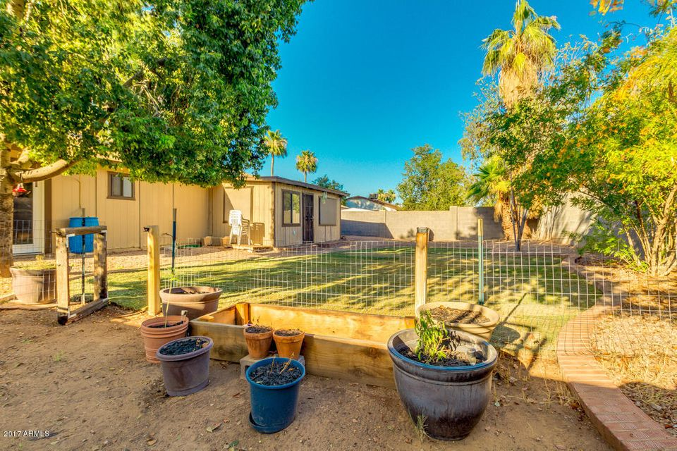 MLS 5620746 317 E Desert Lane, Gilbert, AZ 85234 Gilbert AZ No HOA
