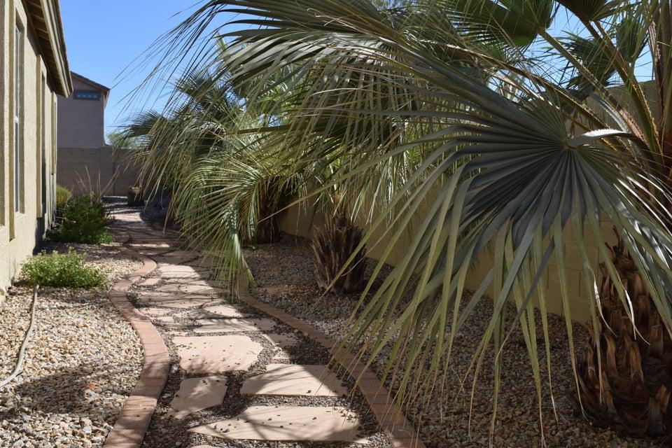 MLS 5620898 1338 E CECIL Court, Casa Grande, AZ 85122 Casa Grande AZ Arroyo Vista