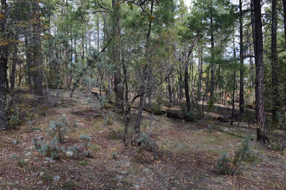 Lot 41 Hunter Creek Christopher Creek, AZ 85541 - MLS #: 5621842