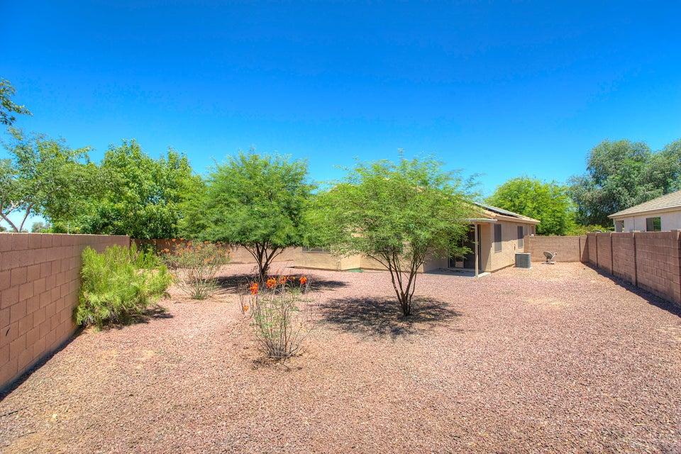 MLS 5622013 3138 N 126TH Drive, Avondale, AZ 85392 Avondale AZ Corte Sierra