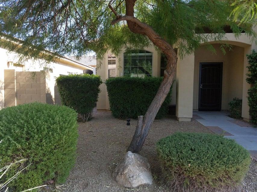 MLS 5613520 12117 W Ocotillo Lane, El Mirage, AZ 85335 El Mirage AZ Four Bedroom