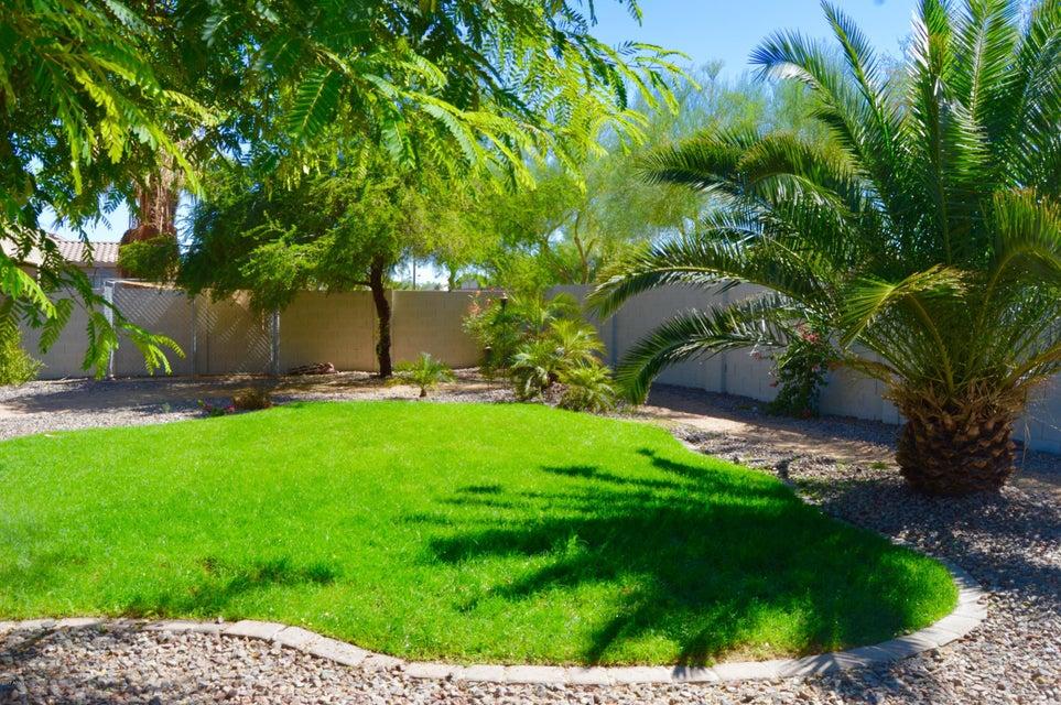 MLS 5602178 4558 N 153RD Lane, Goodyear, AZ 85395 Goodyear AZ Palm Valley