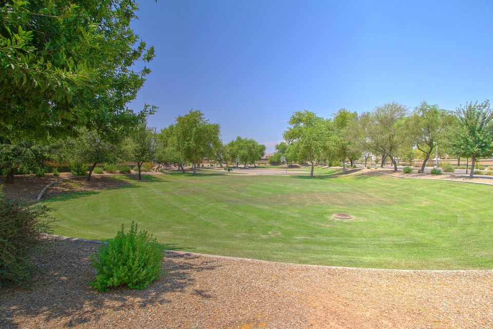 MLS 5623729 13564 W BOCA RATON Road, Surprise, AZ 85379 Surprise AZ Litchfield Manor