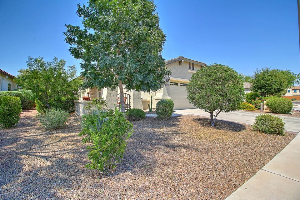 26202 W WAHALLA Lane, Buckeye, AZ 85396