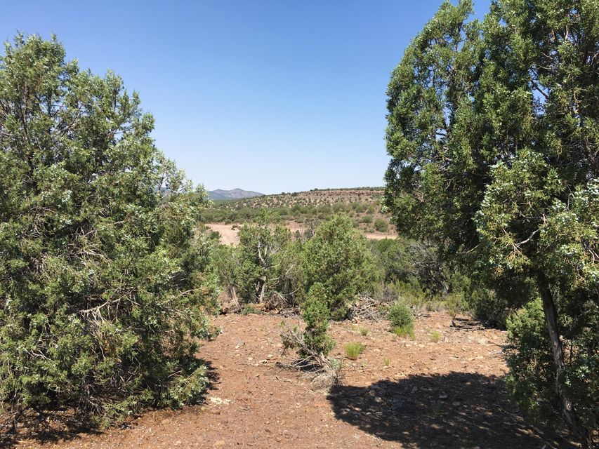 MLS 5623517 23 E Willow Creek Ranch, Kingman, AZ Kingman AZ Scenic