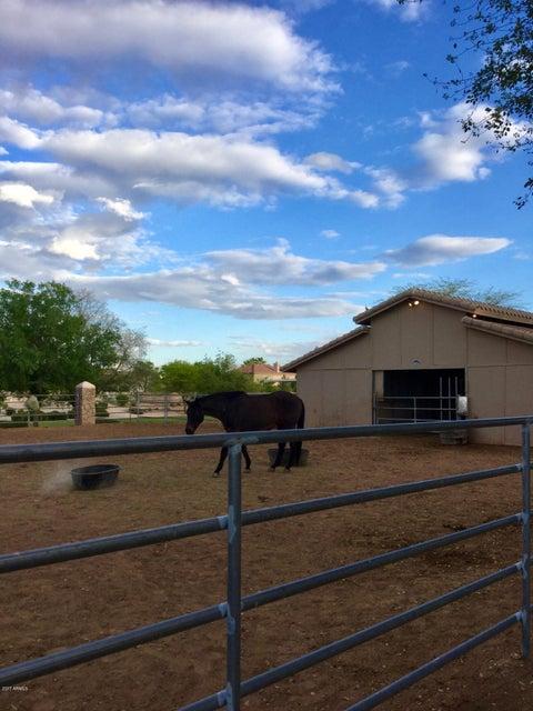 MLS 5624443 486 S Red Rock Street, Gilbert, AZ Gilbert AZ Equestrian