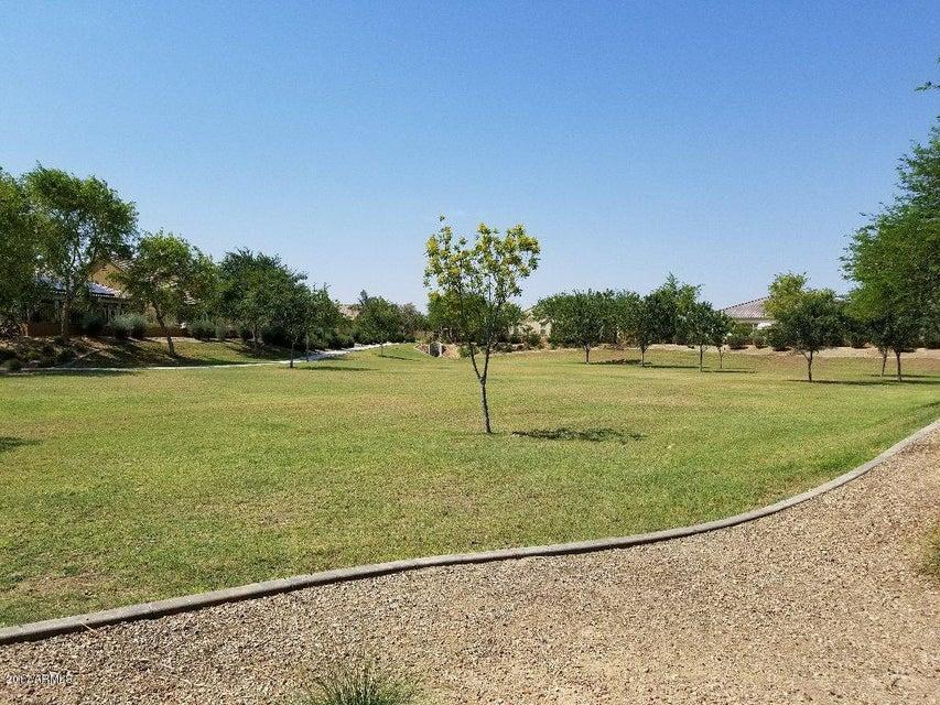 MLS 5637385 2276 N 161ST Avenue, Goodyear, AZ 85395 Goodyear AZ Palm Valley