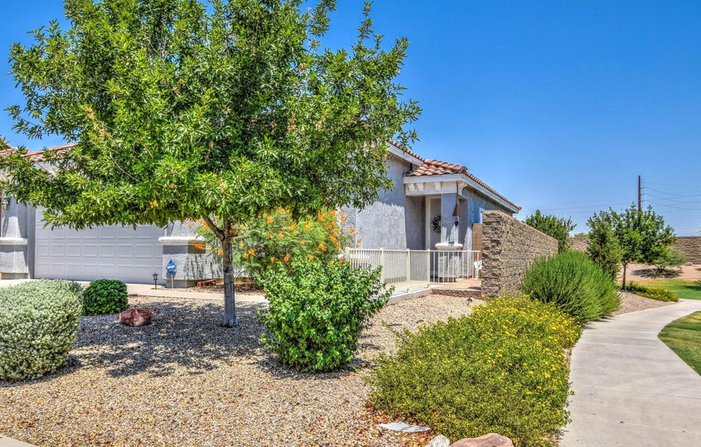 808 E COWBOY COVE Trail, San Tan Valley, AZ 85143