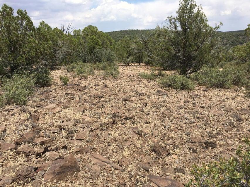 Lot 234 Kit Fox Trail Kingman, AZ 86401 - MLS #: 5460066