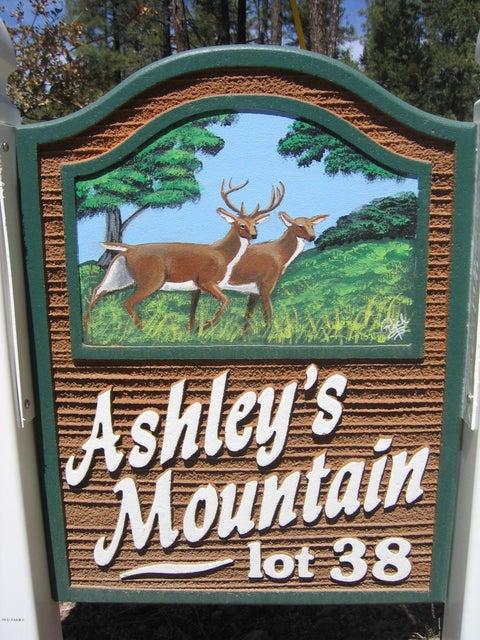 MLS 5589438 475 N COYOTE Trail, Payson, AZ Payson AZ Historic