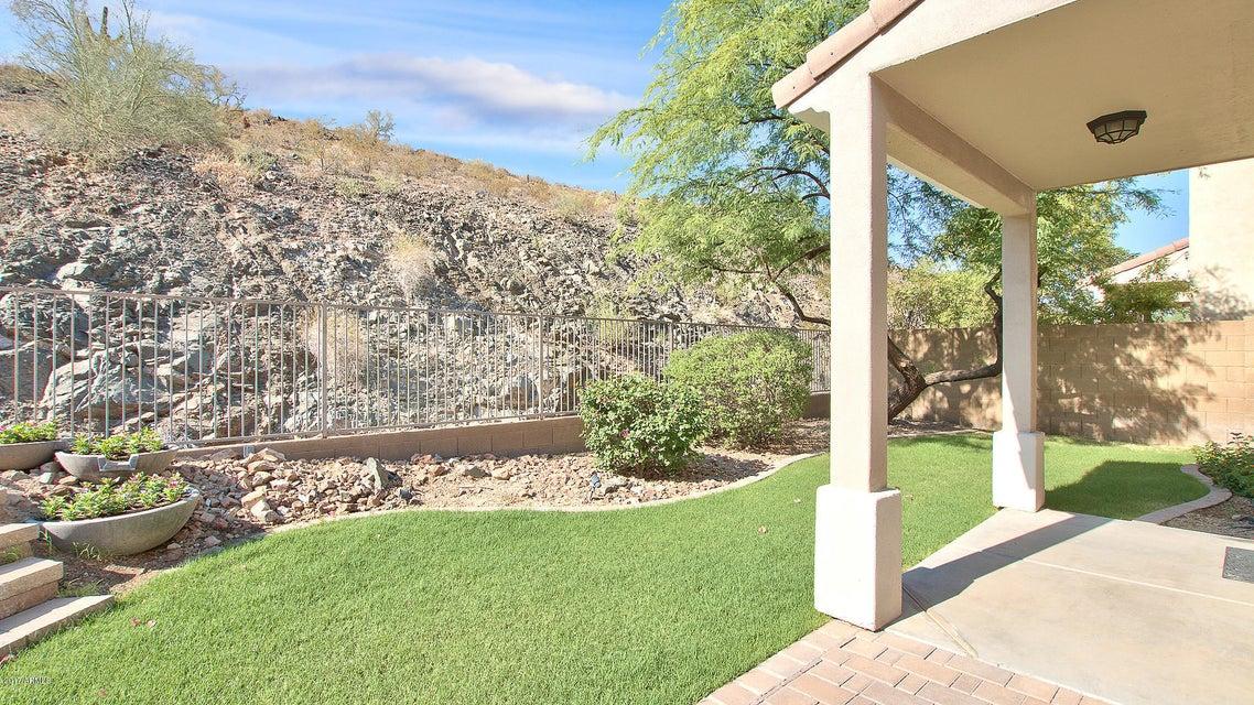 MLS 5625795 117 W MOUNTAIN SAGE Drive, Phoenix, AZ Ahwatukee Club West AZ