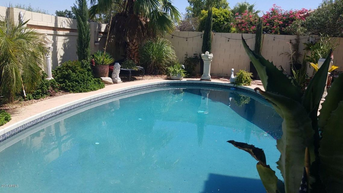 MLS 5627738 3810 N Wintergreen Way, Avondale, AZ 85392 Avondale AZ Private Pool