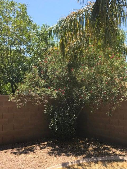 MLS 5628482 3659 E PARKVIEW Drive, Gilbert, AZ 85295 Gilbert AZ Cooley Station