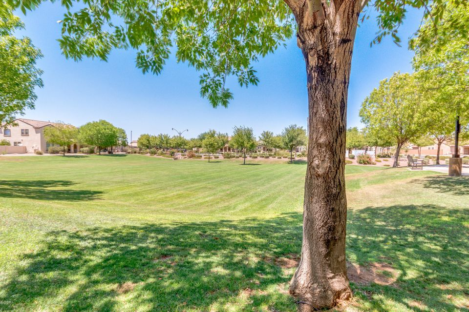 MLS 5629531 3114 E FRANKLIN Avenue, Gilbert, AZ 85295 Lyons Gate