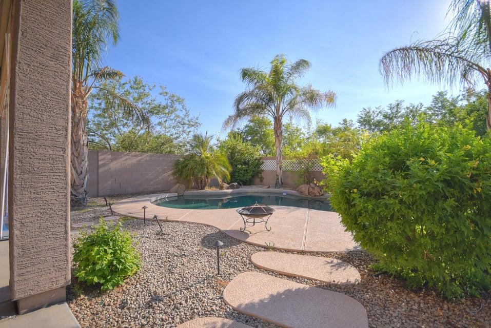 MLS 5629952 7906 N 88TH Lane, Glendale, AZ 85305 Glendale AZ West Glendale