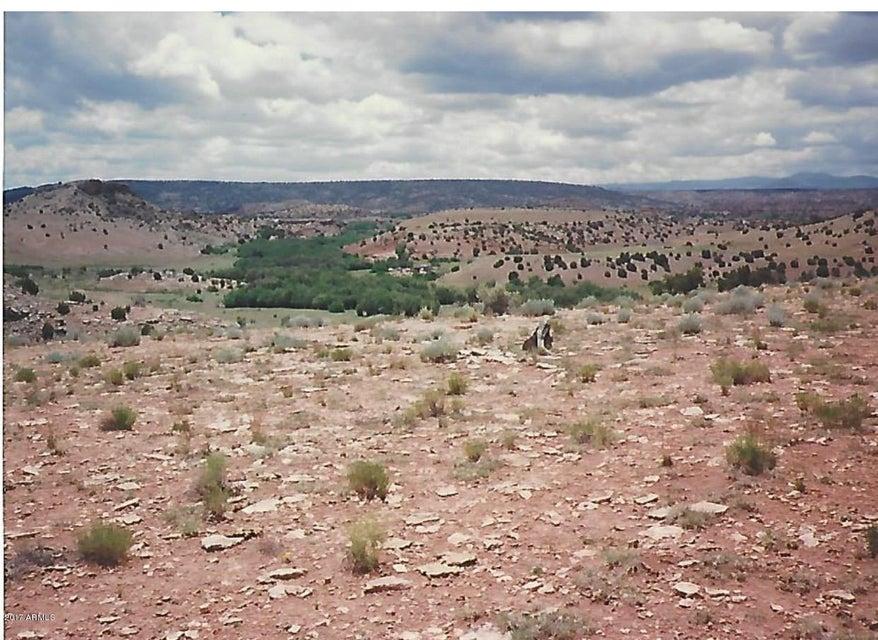 108 River Springs Ranch, #3 Lot108 St Johns, AZ 85936 - MLS #: 5629570