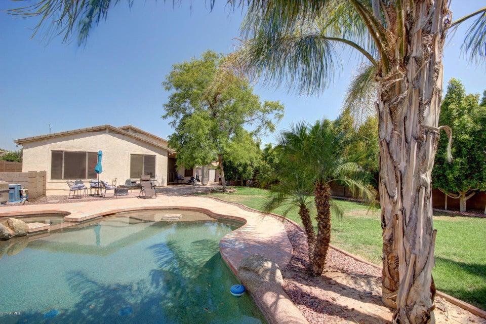 MLS 5633675 3230 N 126TH Avenue, Avondale, AZ 85392 Avondale AZ Corte Sierra