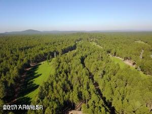 MLS 5568105 7658 INDIAN BEND Road, Pinetop, AZ Pinetop AZ Golf