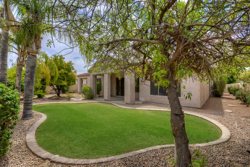 MLS 5630667 1972 W MEAD Court, Chandler, AZ 3 Bedrooms