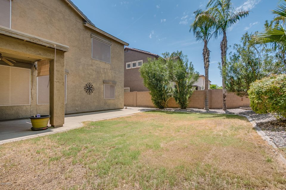 MLS 5633155 1562 S 174TH Avenue, Goodyear, AZ 85338 Goodyear AZ Cottonflower