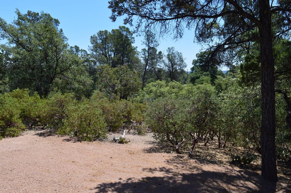 MLS 5633522 400 N MARANATHA Road, Payson, AZ Payson Horse Property for Sale