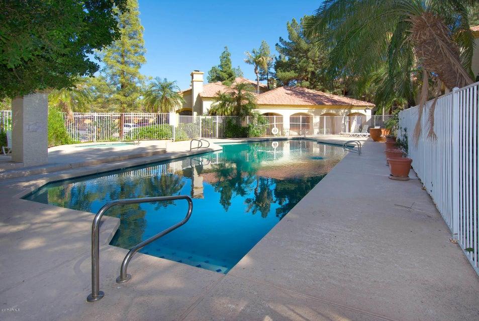 1101 S Sycamore Street 221, Mesa, AZ 85202