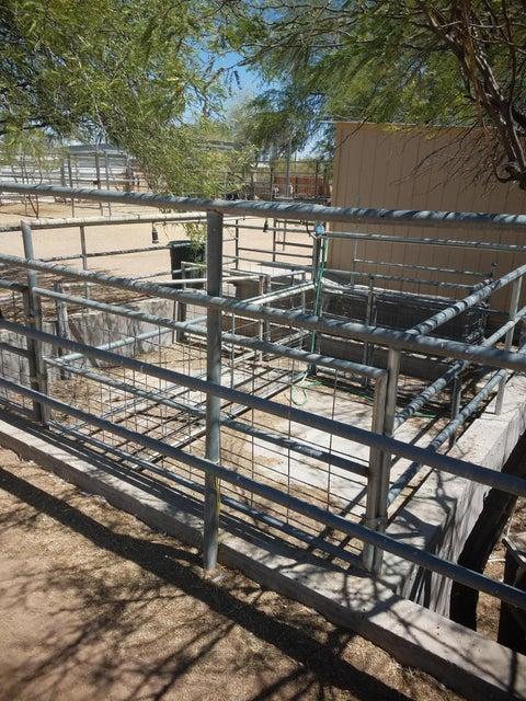 MLS 5635853 1550 W WHITELEY Street Building 1550, Apache Junction, AZ Apache Junction AZ Equestrian