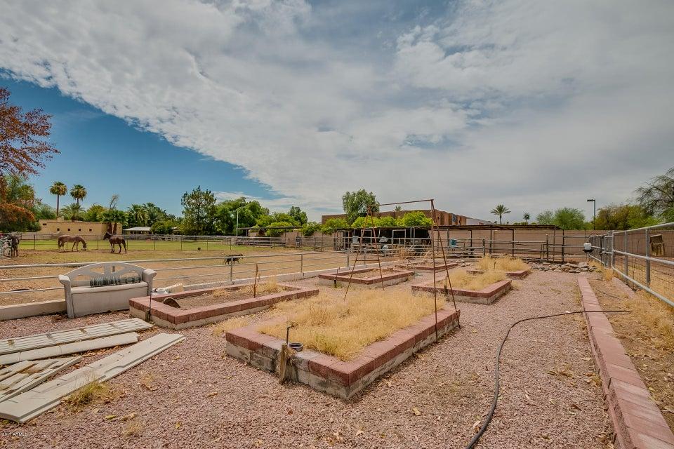 MLS 5636997 1023 E CALLE MONTE VISTA --, Tempe, AZ Tempe Horse Property for Sale