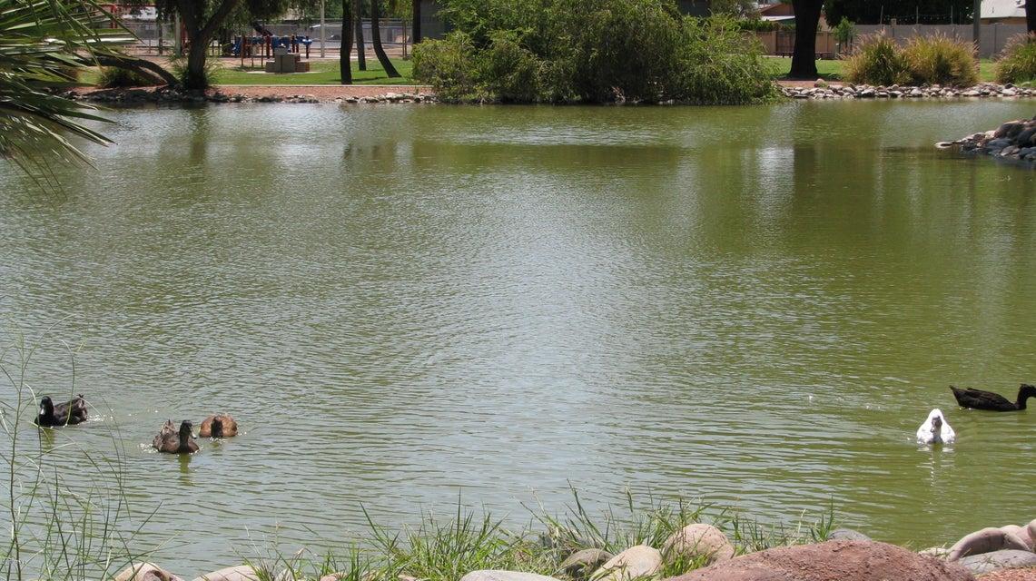 MLS 5637014 1922 E Balboa Drive, Tempe, AZ Tempe AZ Golf