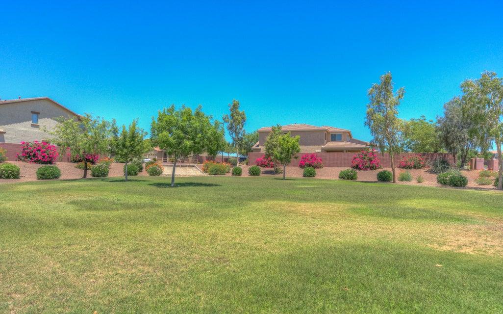 MLS 5637469 26317 N 167TH Avenue, Surprise, AZ 85387 Surprise AZ Desert Oasis