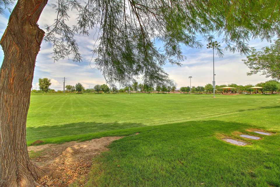 MLS 5639080 20371 E CALLE DE FLORES --, Queen Creek, AZ 85142 Queen Creek AZ Three Bedroom