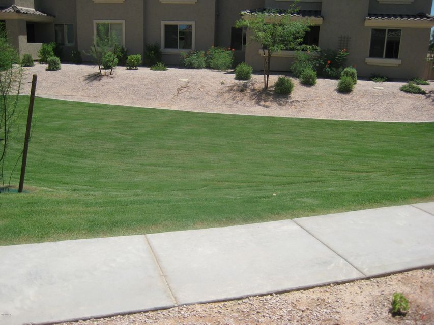 MLS 5637940 900 S CANAL Drive Unit 239 Building 10, Chandler, AZ Chandler AZ Newly Built