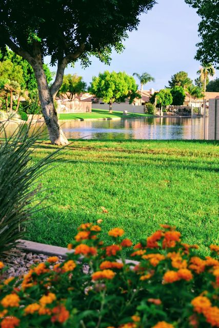 MLS 5649849 650 E VAUGHN Avenue, Gilbert, AZ 85234 Gilbert AZ Stonebridge Lakes
