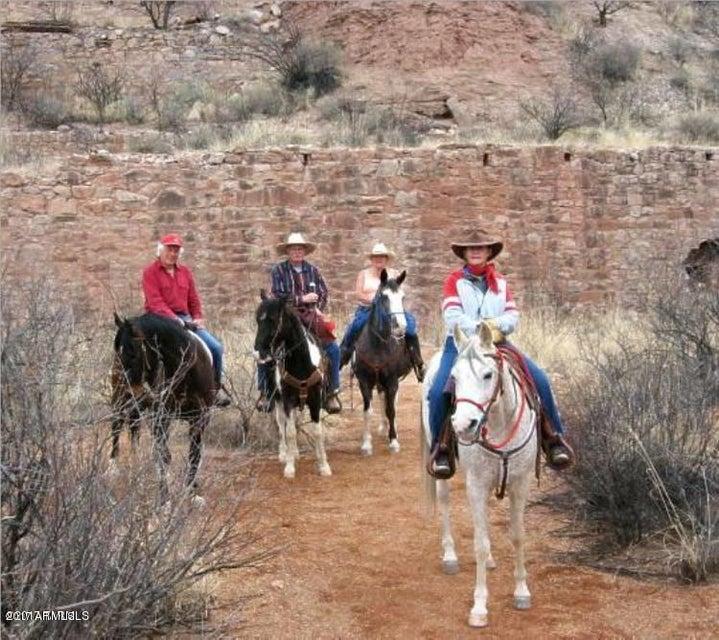 MLS 5643927 919 W HIGHWAY 82 --, Tombstone, AZ Tombstone AZ Equestrian