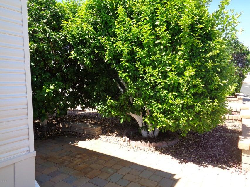 MLS 5644377 111 S GREENFIELD Road Unit 736, Mesa, AZ 85206 Mesa AZ Adult Community