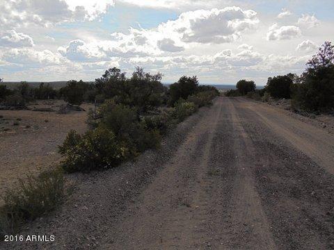 40 N County Road Sec31 Vernon, AZ 85940 - MLS #: 5645992