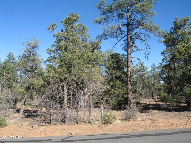 4480 W SHAGGY BARK Road Show Low, AZ 85901 - MLS #: 5646007
