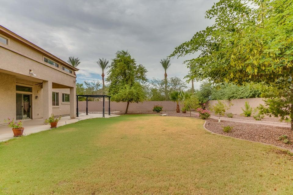 MLS 5646533 10816 N 154th Lane, Surprise, AZ 85379 Surprise AZ Rancho Gabriela