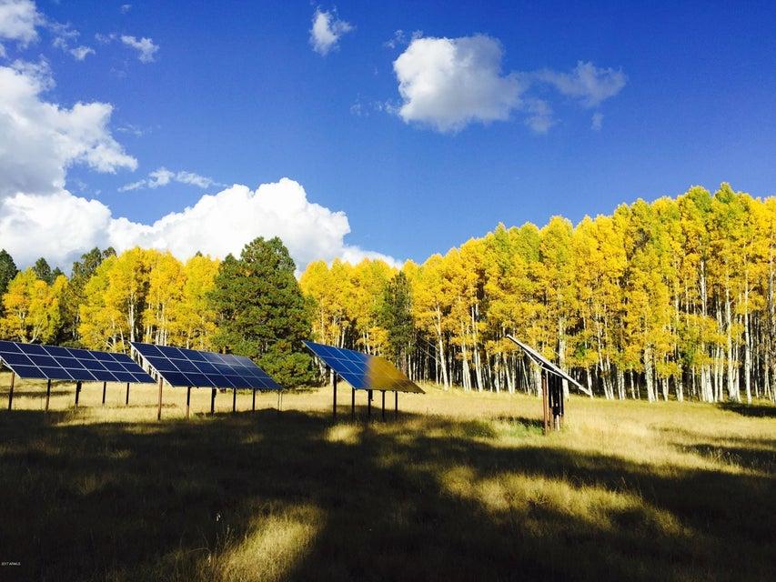 MLS 5650164 Mile 6 Forest Rd 151 --, Flagstaff, AZ Equestrian